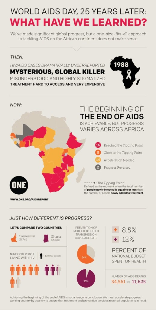 2013-aids-report-infographic